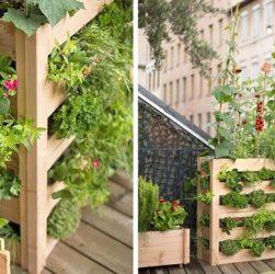 come fare un orto in terrazza